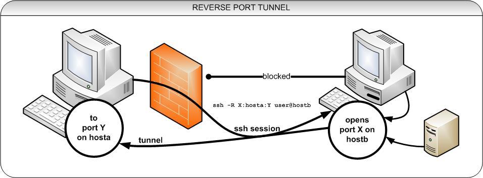 reverse ssh