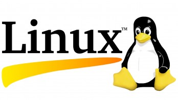 Linux-logo-without-version-number-banner-sized-348x196